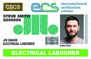 Electrical Labourer Image