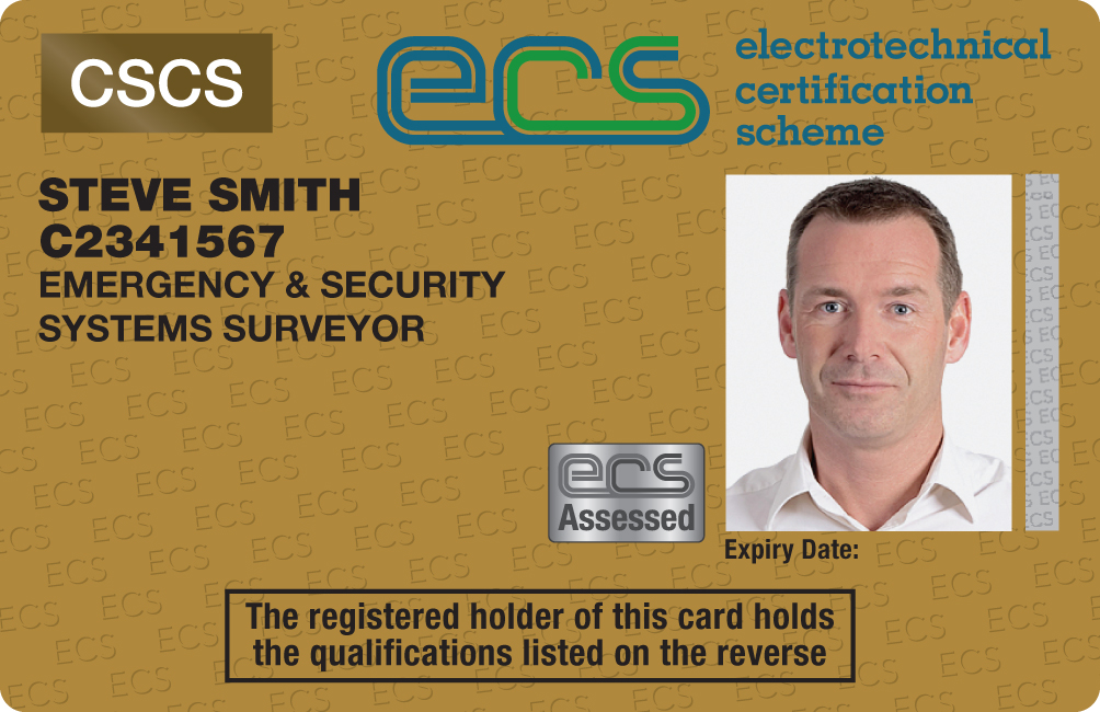 Emergency & Security Systems Surveyor Image